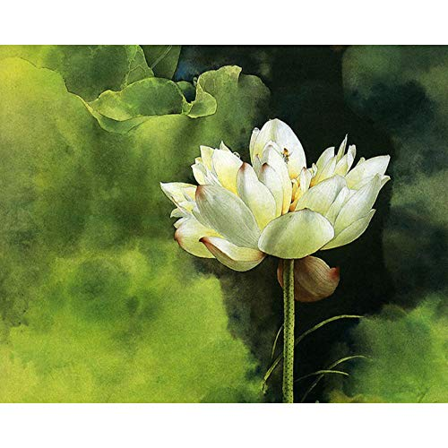 Paint by Number Kit Raw Fragrant Lotus DIY Oil Painting Drawing in The Canvas with Brushes Christmas Decor Decorations Gifts - 16 * 20 inch Frameless