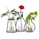 Set di 3 Fioriere Creative da Tavolo con Vasi in Vetro e Supporto in Ferro per Piantare Acqua Decorazione Floreale Composizione Regalo per Centrotavola Matrimonio