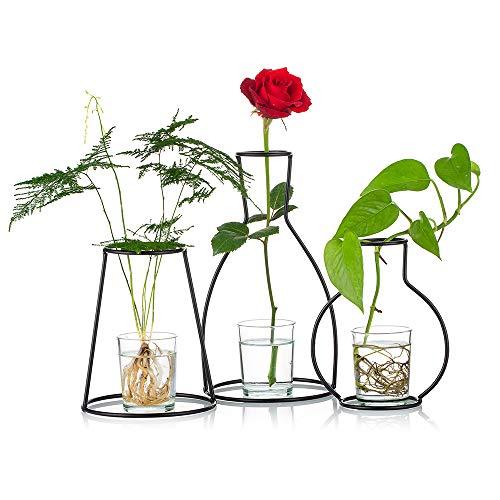 Nuptio Set mit 3 Kreativen Blumentöpfen für Den Schreibtisch, mit Glasbecher, Vasen und Metallständer aus Eisen für Wasserpflanzen, Blumengestecke Dekoration (3 Stck)