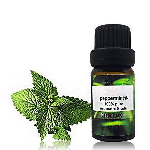 Huile Essentielle Menthe Poivrée, KISSION Aromathérapie Massages Soins de la Peau Huile Essentielle de Plante Pure Élimine la Fatigue Rafraîchissante (10 ML)