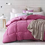 Lamb Velvet Fabric Winter Quilt, Cotton Fiber Filled Core, Double-Sided Thick Breathable Winter Warm Quilt, Suitable for Home Use and Gifts-B_150CM * 200CM 2,5 kg