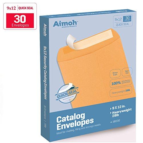9 X 12 Self-Seal Brown Kraft Catalog Envelopes - 28lb - 30 Count (38030)