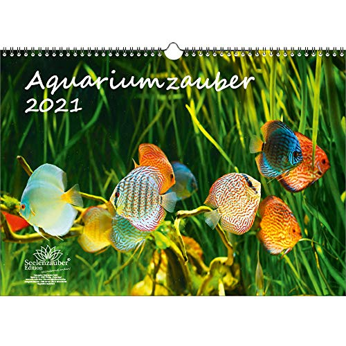 Aquariumszauber DIN A3 Kalender für 2021 Tiere im Aquarium und Unterwasser - Geschenkset Inhalt: 1x Kalender, 1x Weihnachts- und 1x Grußkarte (insgesamt 3 Teile)