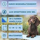 Nosli Kühlmatte Kühldecke Kühlkissen selbstkühlende Decke für Hunde / Sea blue L - 6