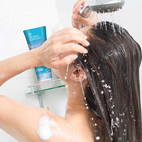 Desert Essence Fragrance Free Conditioner - Pure - 8 Fl Ounce - Gloss & Shine - Smoothes & Softens Hair - No Oil Residue - Antioxidants - Green Tea - Jojoba Oil - Vitamin B5