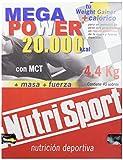 Nutri-Sport Complemento Alimenticio - 150 gr