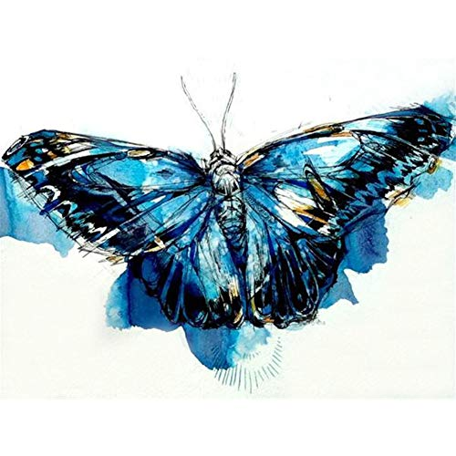 DIY 5D Diamond Painting Kits for Adults Full Drill Embroidery Paint with Diamond 5D DIY Full Drill Diamond Painting Butterfly Embroidery Mosaic Craft Kit