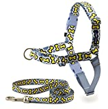 PetSafe Easy Walk Bonez Harness