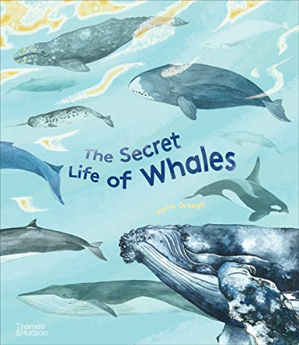 Image of The Secret Life of Whales