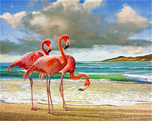 Kit de pintura por números para adultos y niños principiantes, 40,6 x 50,8 cm, flamencos (marco)
