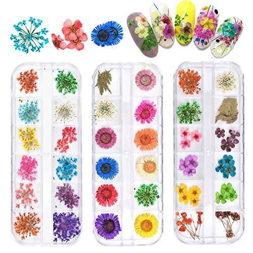NATUCE 3 Box Nail Art Getrocknete Blume Nagel Dekor, 3D Nägel Kunst Aufkleber Trocken Blumen DIY Maniküre Dekoration Nageldesign Zubehör, 12 Farben/Box