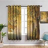 SONGDAYONE - Cortina de tela de bosque, 99 cm de largo, camino rural en una brumosa otoño por la mañana, paisaje natural para sala de estar o dormitorio, color verde café pálido (55 x 39 pulgadas)