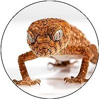 スリップマットスリップマットスクラッチパッドは、任意の十二インチのビニールターンテーブルレコードプレーヤーのカスタムグラフィカルのために感じた - Gecko 2