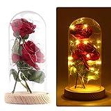 ALLOMN Rose, Rosa de Seda La Bella y la Bestia se levantó con Pantalla de Vidrio 20 LED Blanco Cálido Día de San Valentín Día de la Madre Navidad Regalo de Cumpleaños