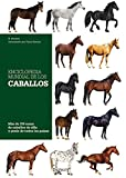 Enciclopedia mundial de los caballos (Enciclopedia Practica)