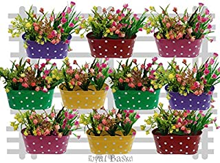 Royal Basket Dotted Oval Railing Planters (Multicolor, Pack of 10)