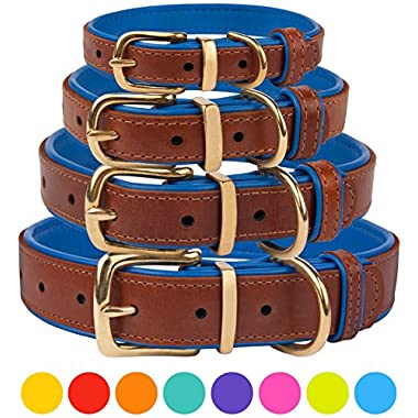 CollarDirect Leather Dog Collar Brass Buckle Soft Padded Puppy Small Medium Large Red Pink Blue Green Purple Yellow (Neck Fit 12 -14 , Navy Blue)
