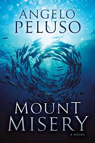 Mount Misery: A Novel (English Edition)
