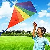 Cometa voladora para adultos y niños – Dragón colorido 64 cm x 74 cm, 30 m de cuerda y 300 cm x 3,5 cm de flechas de rayas, ideal para niños, principiantes actividades al aire libre