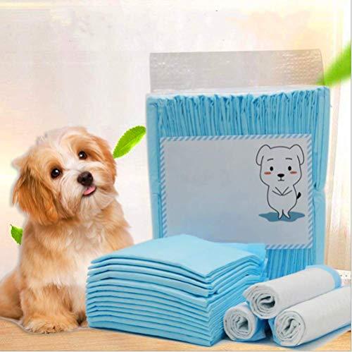 Nifogo Toallitas de Entrenamiento para Mascotas,Empapadores Perros,Empapadores de adiestramiento para Perros,Toallitas de adiestramiento Perros,Ultraabsorbente (20PCS, 60 * 90cm)