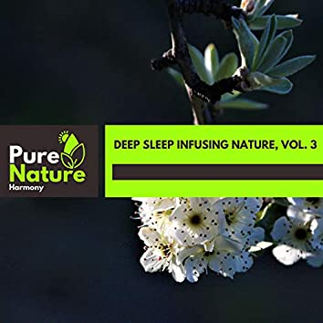 Deep Sleep Infusing Nature, Vol. 3