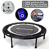 Maximus Life Bounce & Burn Foldable Indoor Mini Trampoline Rebounder for Adults. Fun Way to Lose Weight and get FIT! Plus Rebounding Exercise DVD/Online Video  Optional Handle Bar   Already Assembled
