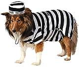 Rubie's Pet Costume, Medium, Prisoner
