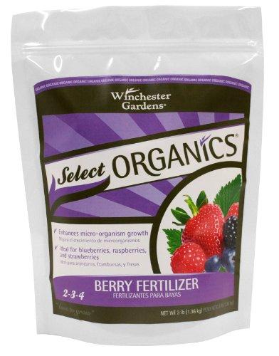 Organics Berry Granular Fertilizer by Winchester Gardens