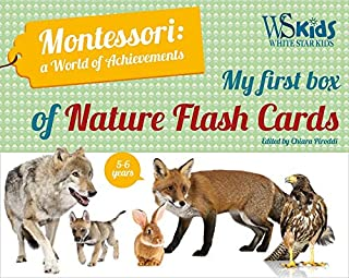 My First Flash Cards Box: Discovering Forest Animals - Montessori World of Achievements