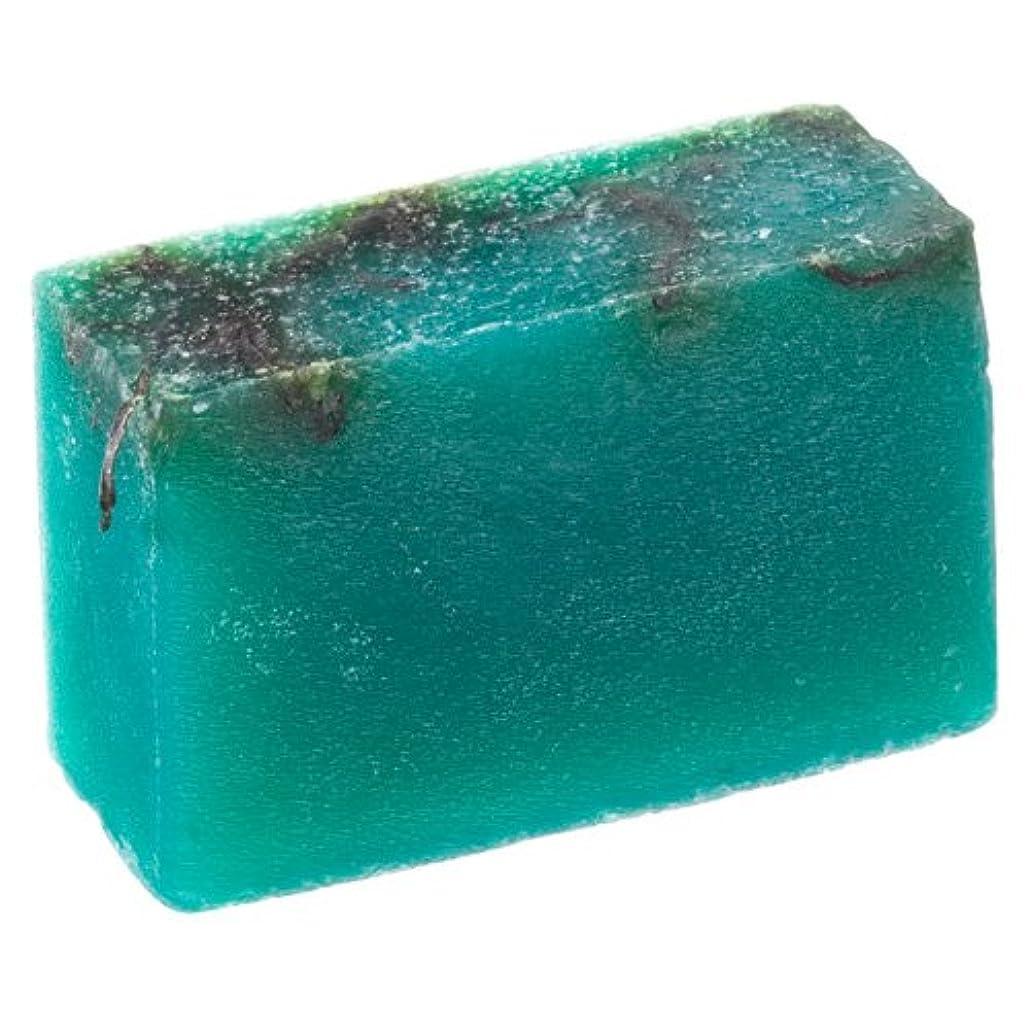 かび臭い高潔な突っ込むラッシュ(LUSH) シーベジタブル(100g)