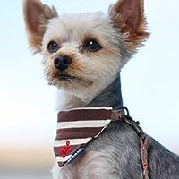 犬と生活 首輪に付けるバンダナ ボーダー S ブラウン