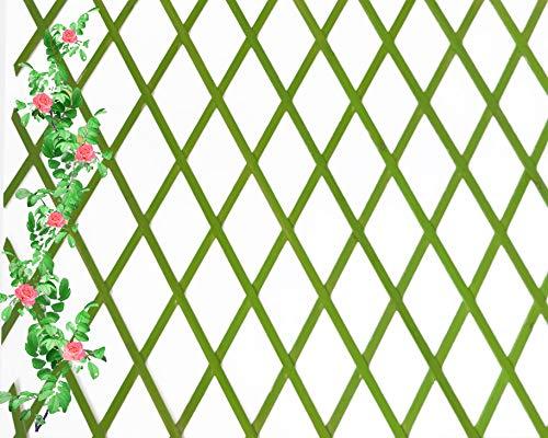 Celosia Extensible de Madera Natural de 1x2 Metros Color (Verde)