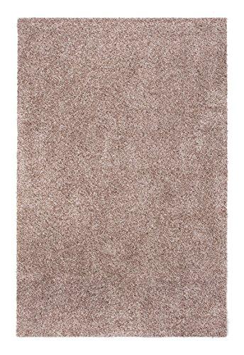 andiamo Schmutzfangmatte Samson waschbarer Teppich für den Innenbereich, 100 x 150 cm hellbeige