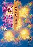 元始、女性は太陽であった―平塚らいてう自伝〈3〉 (国民文庫)