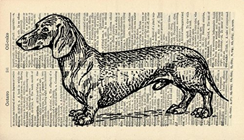 Dachshund DOG ART PRINT - PET ART PRINT - ARTWORK - ANIMAL ART PRINT -...