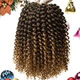 8 Inch Passion Twist Hair 6 Packs Water Wave Crochet Braids for Short Passion Twist Crochet Hair Bohemian Curl Hair(8inch, T1B/27)