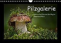 Pilzgalerie - Heimische Pilze aus der Region Rheinland-Pfalz (Wandkalender 2022 DIN A4 quer): 13 beeindruckende Pilzaufnahmen (Monatskalender, 14 Seiten )