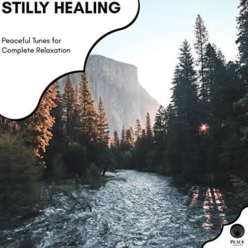 Electro Relaxation (Original Mix)