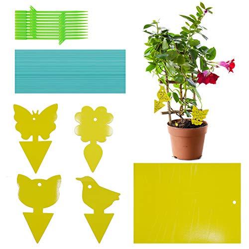 Hongyans 80 Piezas Trampas para Moscas Trampas de Insectos Adhesivas Atrapa Moscas de Doble Cara contra los Mosquitos para Interior Exterior Plantas Árbol de Frutas