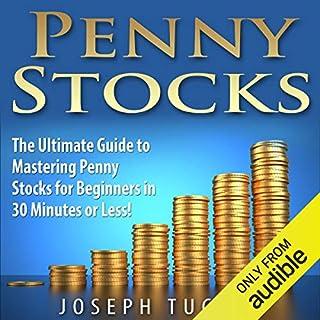 Penny Stocks audiobook cover art