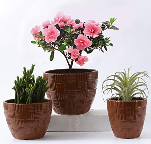"""Naturish Flower Pot Set - 6""""+5""""+4"""" inch Sky Blue- Anti Slip- Glazed Ceramic Plant Pots with Drainage Hole and Accessories for Indoor Planters- Outdoor Garden and Succulent Plants- Home Décor Tool"""