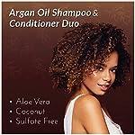 artnaturals Moroccan Argan Oil Shampoo - (12 Fl Oz / 355ml) - Moisturizing, Volumizing Sulfate Free Shampoo for Women… 6