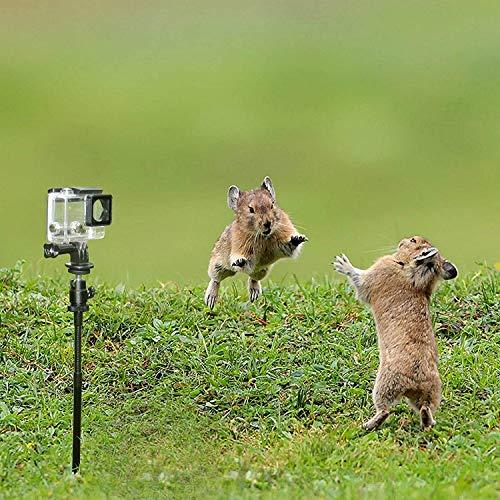 Erdspieß Stick Halterung für Trail Camera Stake Mount | für Jagd und Angeln | passend für Scouting Hunt Kameras und GoPro Action Cam Kameras