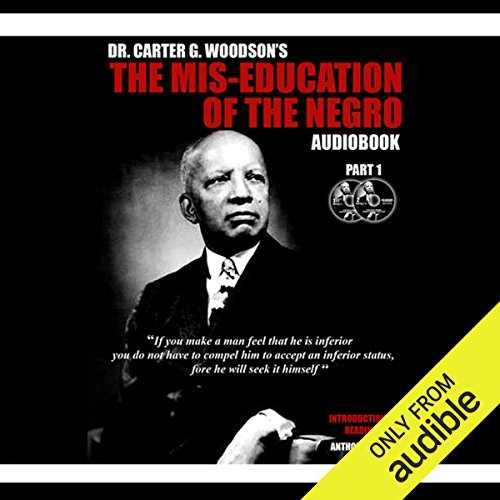 The Mis-Education of the Negro audiobook cover art