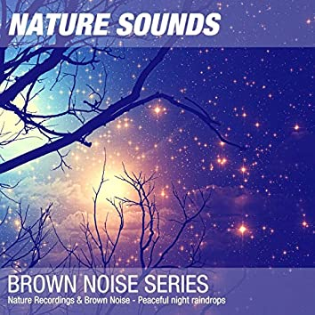 Nature Recordings & Brown Noise - Peaceful night raindrops
