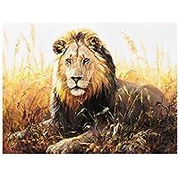 DIY oilペイントペイントby Numbersキット ライオン動物 for Adults初心者、カラフルなキャンバスの -40x50cm (フレームレス)