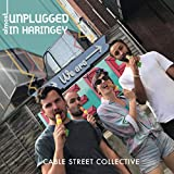 Almost Unplugged in Haringey