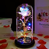 Gifts for Women Best Friend, Birthday Gifts for Girlfriend Women, Artificial Flower Rose with Colorful LED Lights Glass Rose Eternal Rose, Thanksgiving, Anniversary, Wedding Gifts for her Women Wife