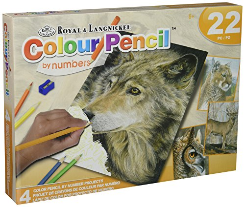 Royal Brush Wildlife Pencil-by-Number