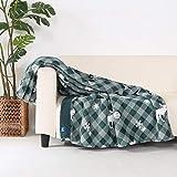 Berkshire Blanket & Life is Good Sherpa Reversible Throw | Super Soft Cozy Plush Plaid Throw | Heavyweight Warmth | Spruce Green | 50' x 70'